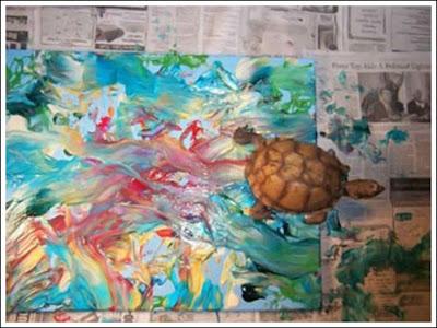 Turtle Art (5) 3