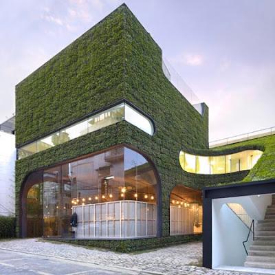 Green Shop (6) 1