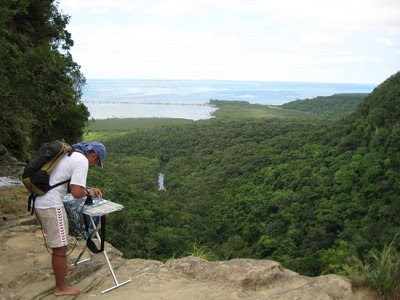 Extreme Ironing (6) 6