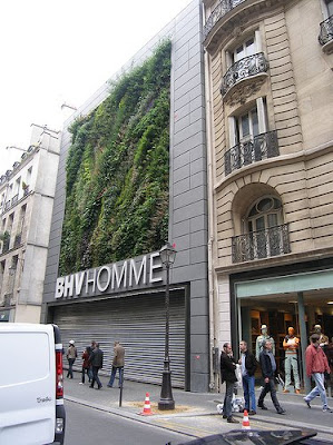 BHVHomme