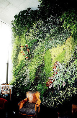 Organic Wallpaper Inside A Private Home