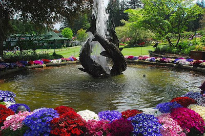 The Butchart Gardens (15) 12
