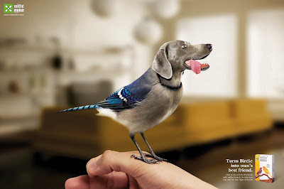 10 Creative Pet Food Advertisements (11) 3