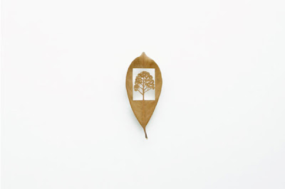 Beautiful Leaf Art (21) 4