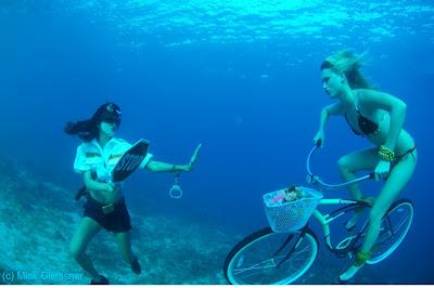 Underwater Photography (21) 19