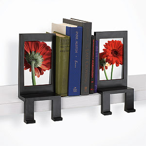 18 Creative and Cool Bookends (18) 17