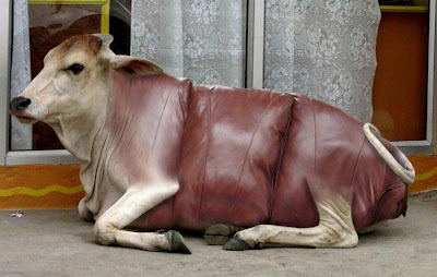 15 Creative and Unusual Sofa Designs (15) 5