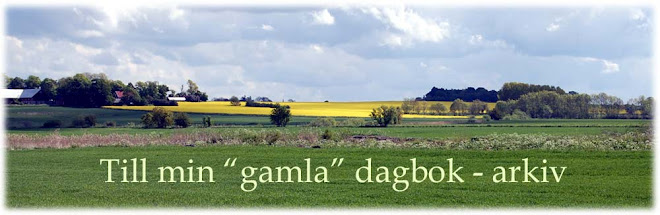 """Gamla dagboken"""