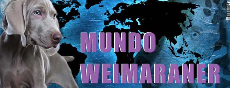 Mundo Weimaraner