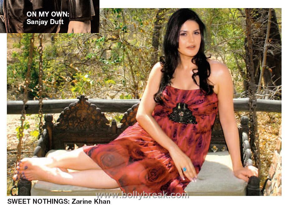, Zarine Khan's new picture