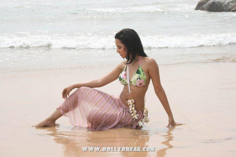 , Nisha Kothari Hottest Bikini Pics