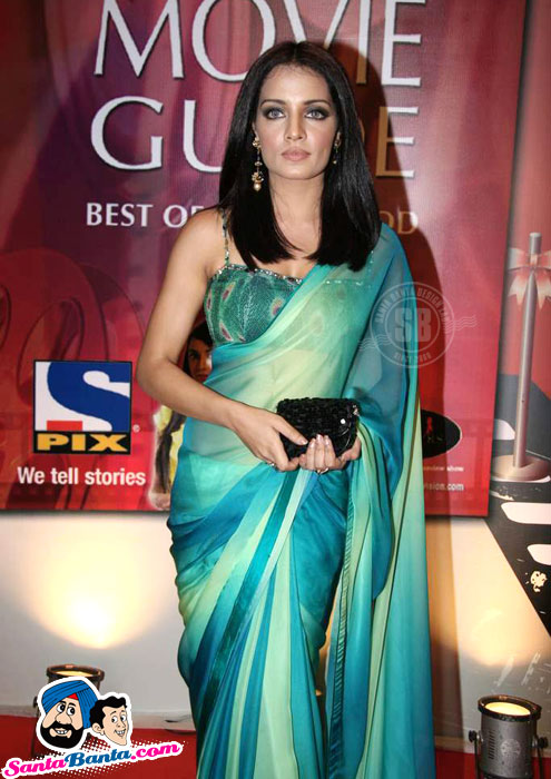 Celina Jaitley Hot Pics in Saree - Times Movie Guide Launch