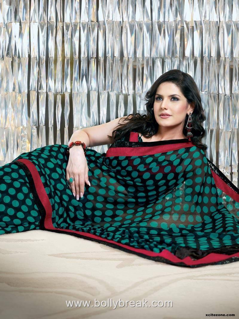 , Zarine Khan Saree Photo Gallery - HOT