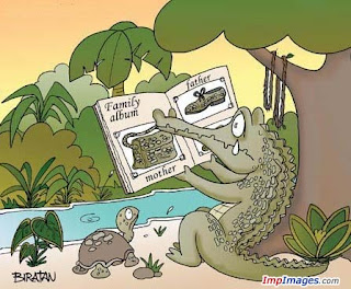 Crocodile's Family
