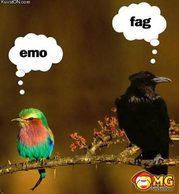 http://3.bp.blogspot.com/_Nw8W-0FfOEY/S_QEmBhAPbI/AAAAAAAAAxk/5QLQG6k6_1c/s1600/EMO1.jpg