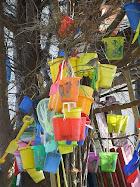 Abandoned Buckets