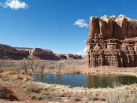 The Bluff Pond