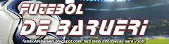 FUTEBOL DE BARUERI  futeboldebarueri.blogspot.com
