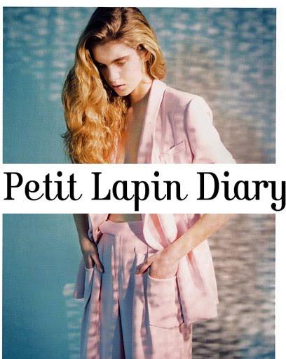 petit lapin diary