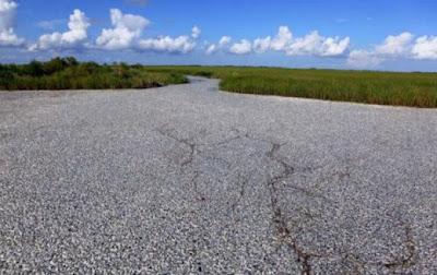 هل تعتقد أن هذا طريق-غرائب وعجائب-منتهى