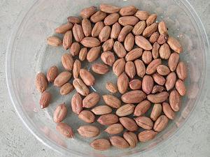 arachides décortiquées dans une assiette