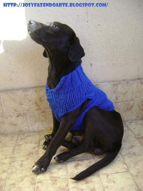 receita de roupa de cachorro em trico