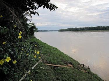 El serpentear del río Madre de Dios