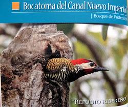 """Bosque de Protección. Forest Protection. """"Bocatoma del Canal Nuevo Imperial"""