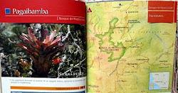 """Bosque de Protección  """"Pagaibamba"""""""