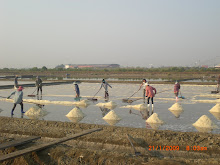 Villagers in the salt marshes just outside Bangkok