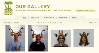 san francisco zoo, blog, pub, jean julien guyot, infopub.blogspot.com, ipub.ca.cx