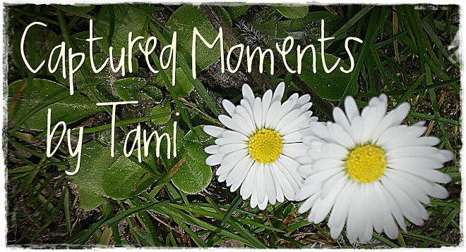 Captured Moments by Tami