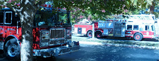 various local fire engines
