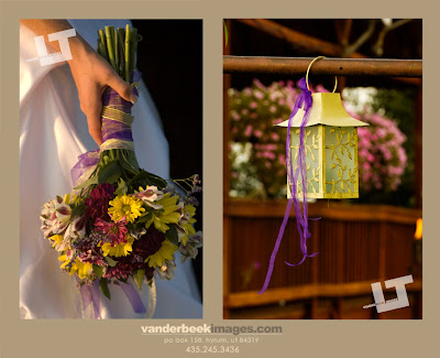 Wedding Photography Utah on Vanderbeek Images Utah S Premiere Family And Wedding Photography