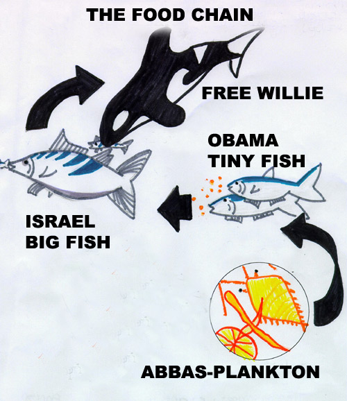 simple food chain diagram. simple food chain diagram.