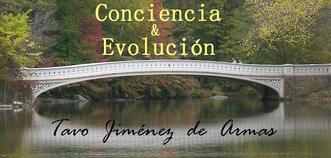 Conciencia &amp; Evolucin
