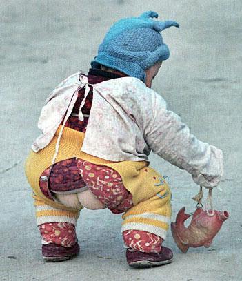 фото китайских попок