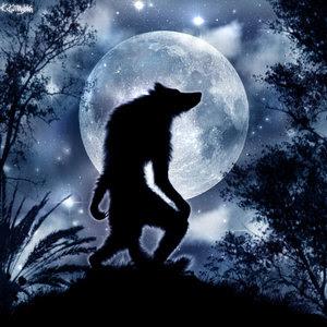 Zero le Petité Titan __Werewolf___