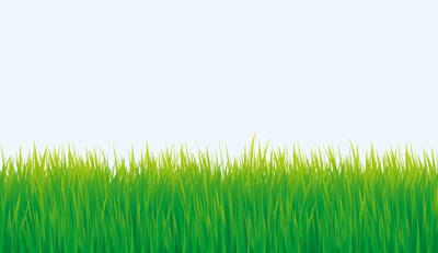 çayır çimen çim Vektör Tasarımları Grass Vectors Eps Grafikindir