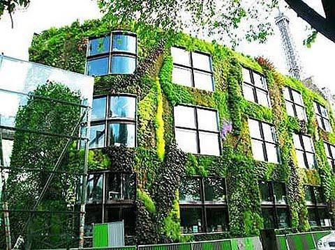 ciudad ecologica