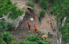 Caribbean cultural identity and biodiversity in Brazil.