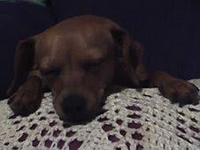 Anna Ama crochet