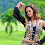 Exclusive Hot N Sexy Wallpapers,photos Of Hot Indian Actress Bhavana