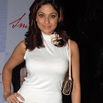 North Indian Actress Shamita Shetty Wallpapers,profile,biography,filmography