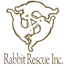 Rabbit Rescue Inc.