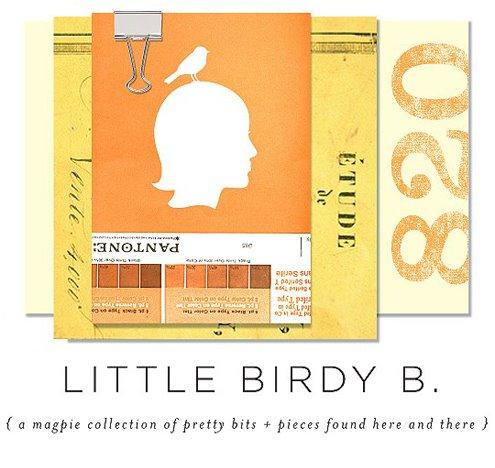 Little Birdy B.