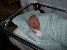 Linus nyfödd
