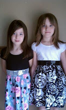 My sweet twin grand-daughters...