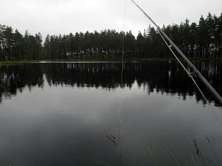 Flugfiske Två Morgontrippar