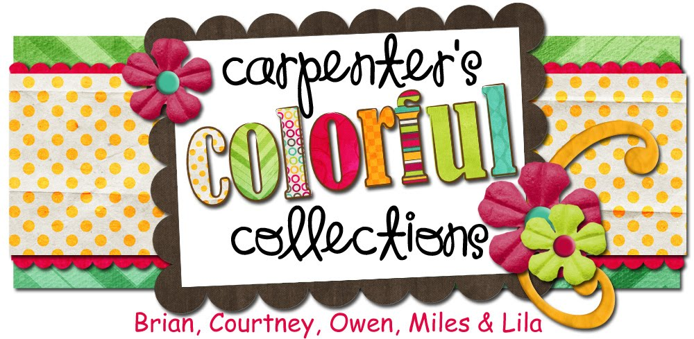 Carpenter&#39;s Colorful Collections